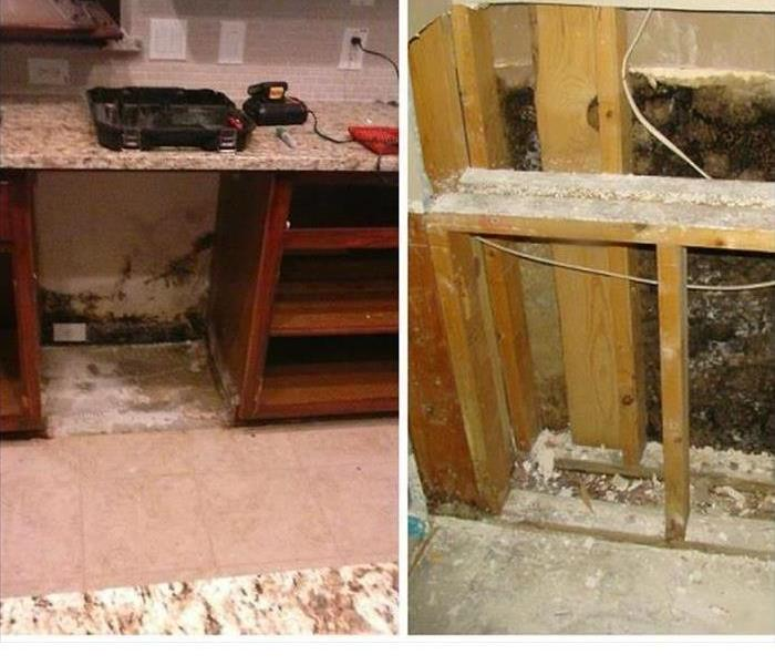 Ceiling Mold Problems Before