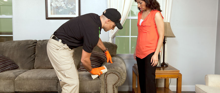Temple, TX carpet upholstery cleaning